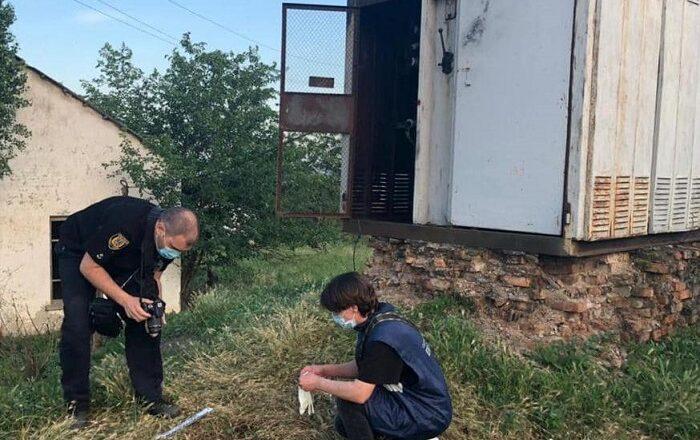В Измаильском районе током убило пятилетнего мальчика. ФОТО