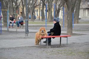 Дама с собачкой.Одесса